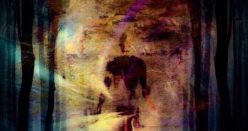 Fractal-Mirror-Garden-Of-Ghosts-Cover