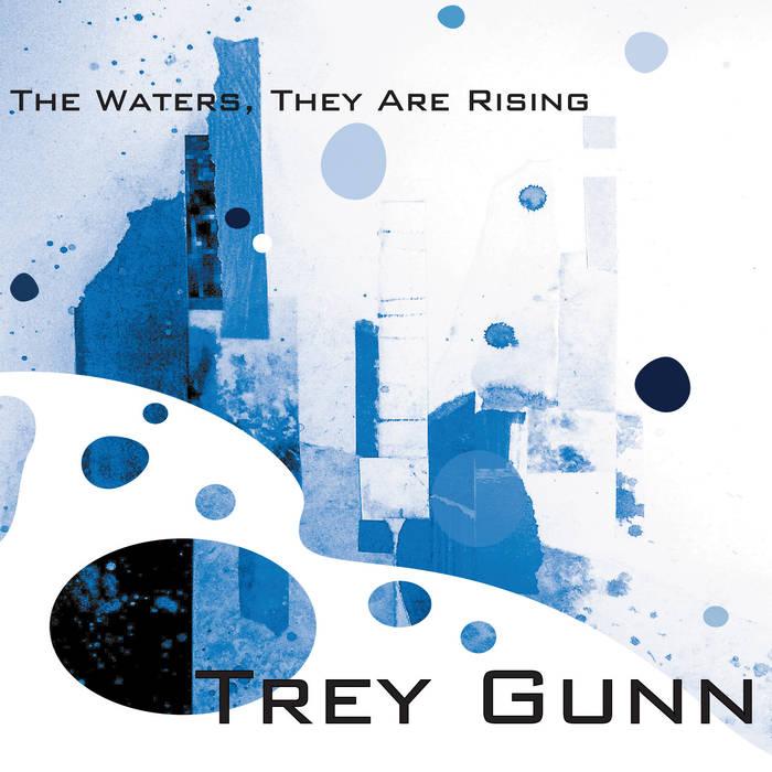 Trey Gunn