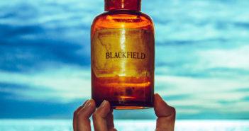 Blackfield - V