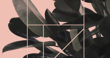 Svin - Virgin Cuts (Rillbar, 2018)