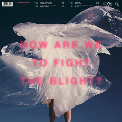 The Shaking Sensations - How Are We To Fight The Blight