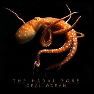 Opal Ocean - The Hadal Zone (Flowfish/BrokenSilence, 16.10.20)