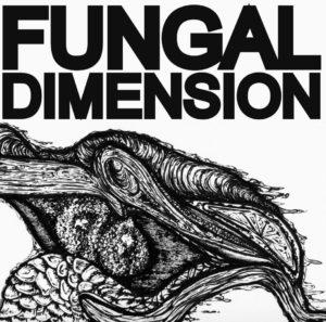 Fungal Dimension - Fungal Dimension (Ogorekords, 6.11.20/18.12.20
