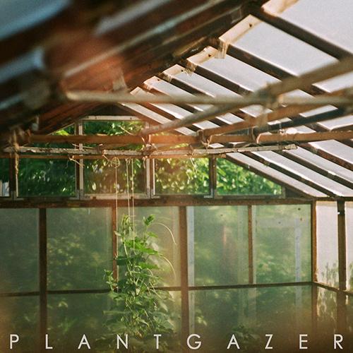 Show Me A Dinosaur - Plantgazer (unsigned, 4.12.20)