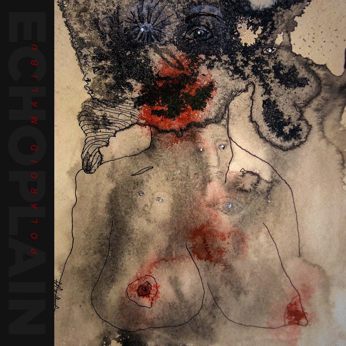 Echoplain - Polaroid Malibu (Atypeek Music/ Araki Records, 2021)