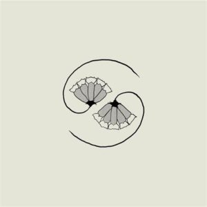 Godspeed You! Black Emperor – G_d's Pee AT STATE'S END! (Constellation Records, 02.04.21)