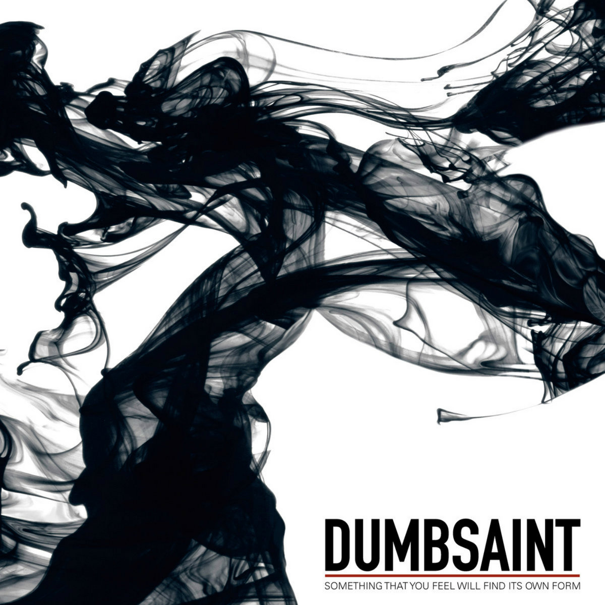 Dumbsaint - Something That You Feel Will Find Its Own Form (Bird's Robe Records, 2012/2021)