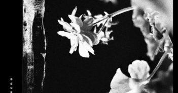 Jinjer – Wallflowers (Napalm Records, 27.08.21)